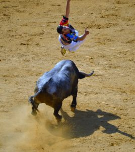 CampoToro BullLeaping