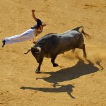 bull Tour Madrid