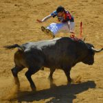 Toro Madrid
