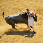 Madrid Bull