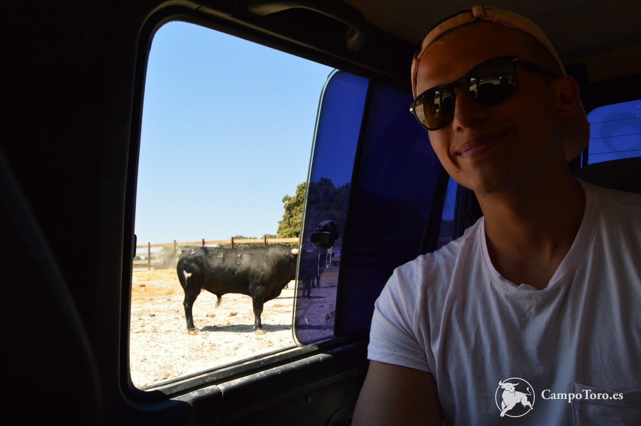 Bullfight Tour