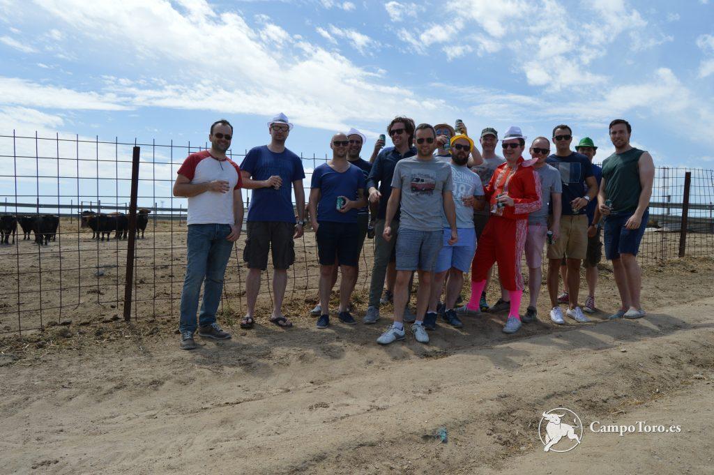 Madrid Bullfight experience