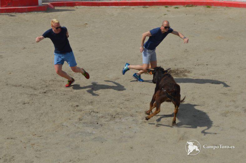 Madrid Bullfighter Experience