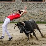 Bullfight Madrid demonstration