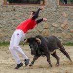 Bull leaper Madrid