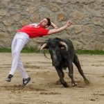 Bullfight demonstration Madrid