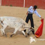 Bullfighting Experience Madrid